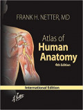 Atlas of Human Anatomy , 4e