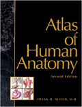 Atlas of Human Anatomy: 2e
